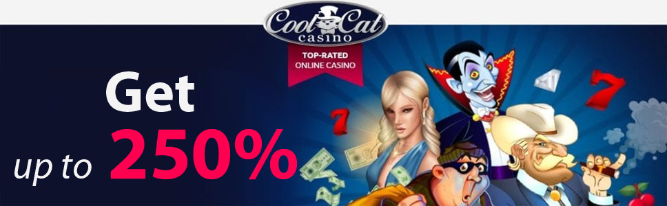 Why You Should Play at Cool Cat Casino